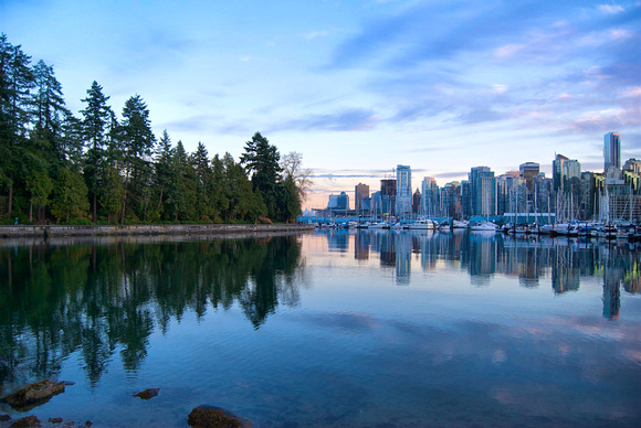 Downtown Vancouver Skyline Meets the Trees of Stanley Park
